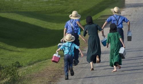 Amish_children_walking_home_from_school.jpg