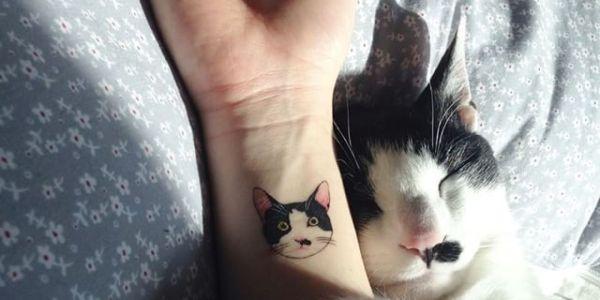 Cat Tatt.jpg
