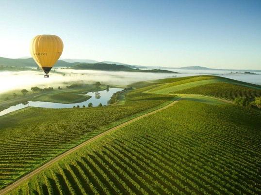 hot-air-balloon-over-yarra-valley.jpg