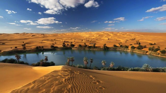 Oasis Libya.jpg