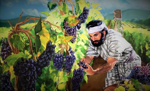working in the vineyard (2)